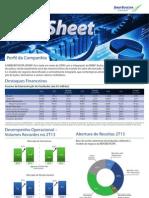 Fact Sheet-2T13