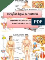 Portafolio digital de Anatomía.pptx