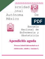 Apendicitis Aguda Expo Trabajo