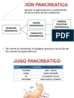 Seminario Pancreas