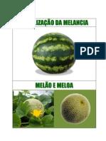 Fertilização Melancia, Melão e  Meloa