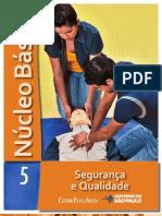 NÚCLEO BÁSICO VOL.5 - SEGURANÇA E QUALIDADE