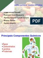 Alimentos componentes quimicos