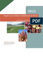 15._Informe Preliminar. Seguro Por Indices Climaticos en Puno. 2012