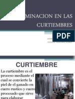 Contaminacion en Las Curtiembres 1