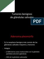 adenoma pleomorfo.ppt