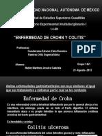 Enfermedad de Crohn y Colitis