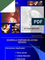 Histogenesis Sistema Nervioso