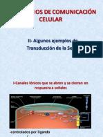 Mecanismos de Comunicacion Celular