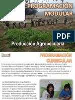 programacioncurricularmodulareneducacionsuperior-120819204623-phpapp01