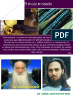 11 02 19 EL MAIZ MORADO Www.gftaognosticaespiritual.org