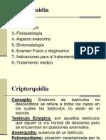 criptorquidia