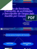 Diseño de funciones, evaluacion de actividiades