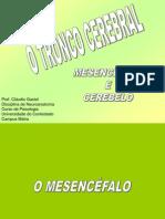 5- CEREBELO E MESENCÉFALO