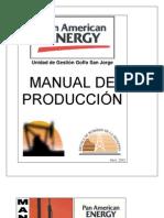 Manual Pae 2002