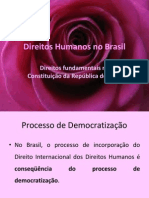 104022_Direitos Humanos No Brasil