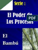 EL BAMBÚ (poder del proceso sostenido)