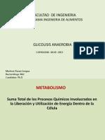 GLUCOLISIS ANAEROBIA-1