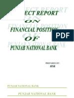 Report on Punjab National Bank