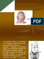 masastiroideasdecuello-120807004844-phpapp01