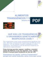 4. Presentacion Transgenicos Ok