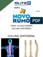 Coluna Vertebral - Aula 01