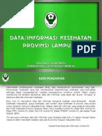 Data Informasi Kesehatan Prov Lampung