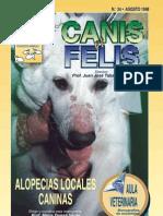 33264936 Alopecias Locales Caninas
