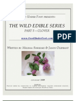 CLOVER - Wild Edible Series