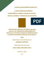 Tesis Unsm Propagacion Vegetativa de Quinilla