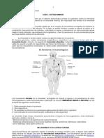 4º Medio Guía 2 Sistema Inmune