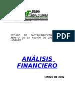 Analisis Financiero Hidalgo