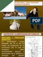 Clase 3 - Alimentacion