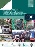 Eficiencia Del Suelo y Su Uso en Fertilizantes Fosforados