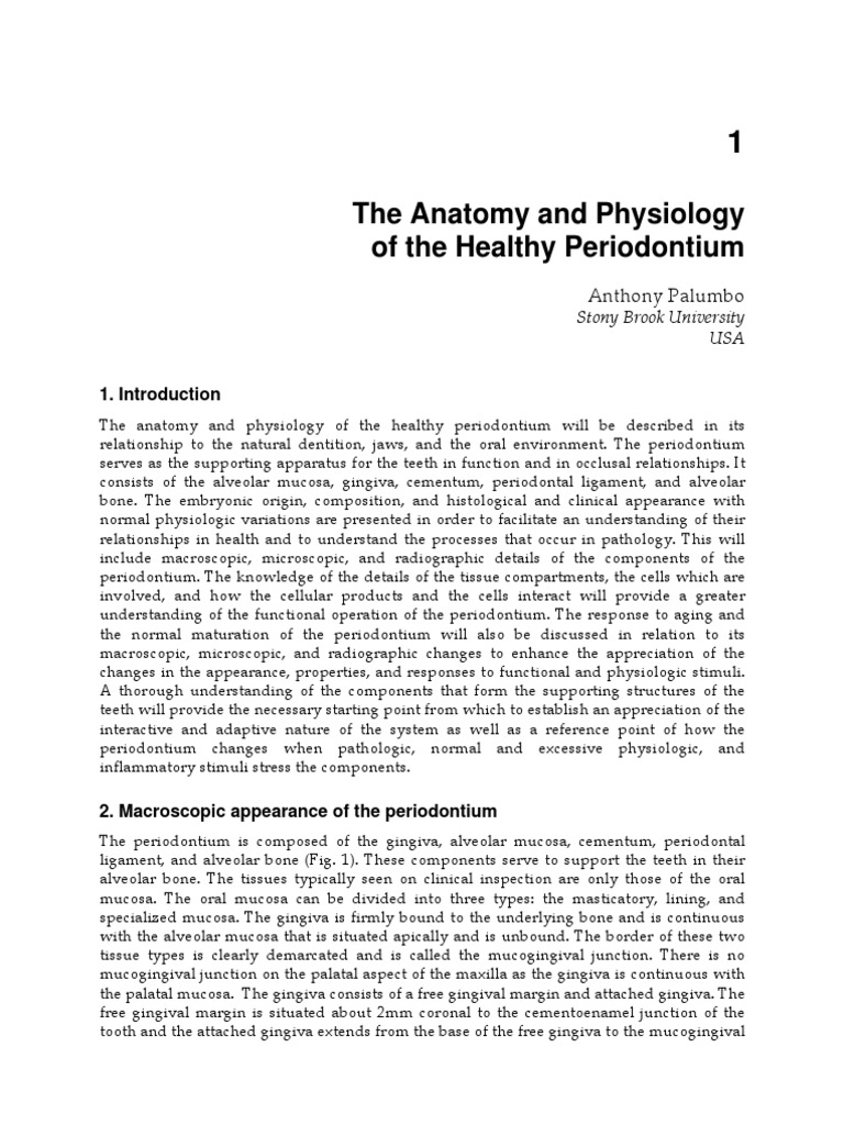 The Anatomy and Physiology of the Healthy Periodontium | Human Tooth ...