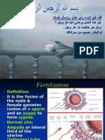 Fertilization &Implantation