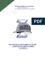 c3a1cido-sulfurico-e-soda-cc3a1ustica.doc