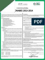 Convocatoria PRONABES 13-14