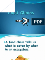6yr0912foodchains-090608193215-phpapp02