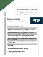 Curriculum Gonzalo Guzman
