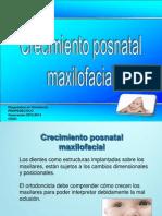 Presentacion Crecimiento Posnatal Maxilofacial