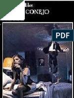 Updike, John - Corre Conejo