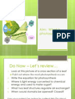 11-29photosynthesisreview-