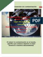 Contaminación  Ambiental  en la Región Ucayali