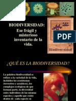 Biodiversidad Inventario de La Vida 01 Jun 2013