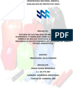 Universidad Nacional Abiert Trabajo de Evaluacion de Proyectos. (2) Francysmar