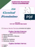 Anatomia Feminino[1] Unifra