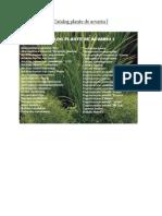 Catalog Plante Acvariu 1