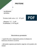 proteine-lp