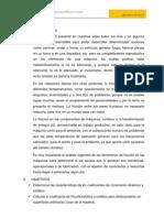 INFORME FISICA I 3.docx